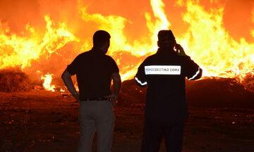 Μαίνεται η μεγάλη πυρκαγιά στη Φθιώτιδα - Οριακά γλίτωσαν δύο χωριά (vid)
