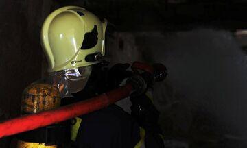 Σε εξέλιξη φωτιά στον Παρνασσό - Εκκενώθηκαν κατασκηνώσεις