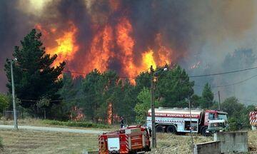 Αναζωπυρώθηκαν οι πυρκαγιές στην Πορτογαλία - Έκκληση για βοήθεια στους Ισπανούς