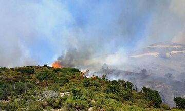 Πυρκαγιά σε εξέλιξη στη Ραφήνα