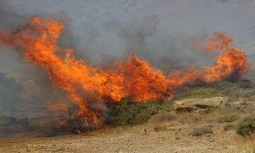 Σε εξέλιξη φωτιά σε δασική έκταση στο Ναύπλιο