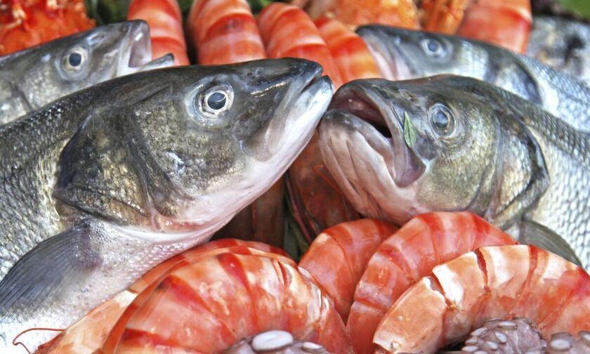 Ποια ψάρια πρέπει να τρώμε και ποια να αποφεύγουμε