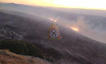 Φωτιά στον Υμηττό: Επιχειρούν εναέρια μέσα