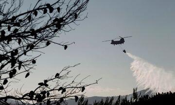 Πολύ υψηλός και αύριο ο κίνδυνος πυρκαγιάς - Ποιες περιοχές είναι στα «κόκκινα»