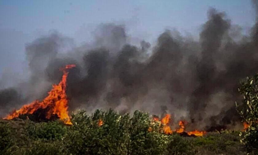 Ανεξέλεγκτη η φωτιά στη Θήβα - Κινείται στα όρια της Βοιωτίας με την Αττική