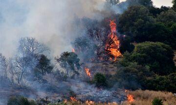 ΚΕ.ΕΛ.ΠΝΟ: Προληπτικά μέτρα προστασίας μετά από πυρκαγιά