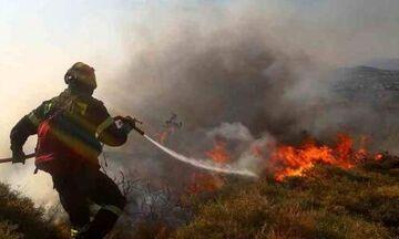 Θάσος: Υπό πλήρη έλεγχο η φωτιά