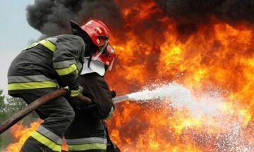 Φωτιά και στην Ηλεία!