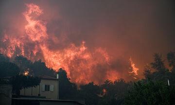 Πύρινος εφιάλτης στην Εύβοια - Εκκενώθηκαν 4 χωριά - Στα 11χλμ. το μέτωπο της φωτιάς (vids, pics)