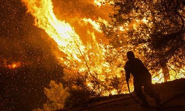 Μαίνεται η πυρκαγιά στην Εύβοια - Στη μάχη της κατάσβεσης από το πρωί τα εναέρια μέσα