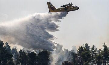 Εύβοια: Αγωνιώδεις προσπάθειες για να περιοριστεί η πυρκαγιά (pics & vids)