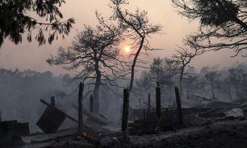 Τεράστια οικολογική καταστροφή στην Εύβοια - «Στάχτη» 28.000 στρέμματα πευκοδάσους (pics & vids)