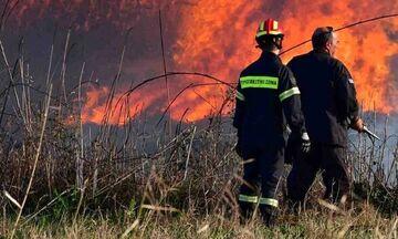 Πέμπτη 15/8: Πολύ υψηλός κίνδυνος πυρκαγιάς