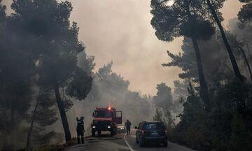 Εύβοια: Συνεχίζεται για τρίτη ημέρα η μάχη με τις φλόγες