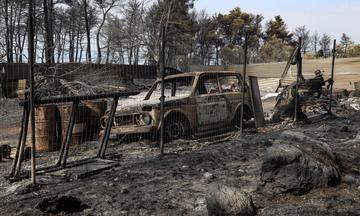 Φωτιά Εύβοια: Υπό διερεύνηση το άλλοθι ενός υπόπτου