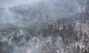 Υψηλός κίνδυνος πυρκαγιάς το Σάββατο - Δείτε σε ποιες περιοχές της Ελλάδας (pic)