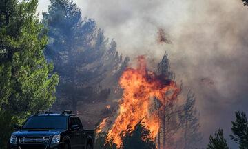 Πυρκαγιά και στη Μάνδρα!