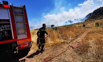 Ρέθυμνο: Σε εξέλιξη φωτιά - Ισχυροί άνεμοι δυσχεραίνουν την κατάσβεση