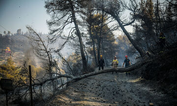 Πυρκαγιά και στην Ιεράπετρα Κρήτης!