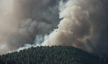 ΤΩΡΑ: Δυναμώνει η πυρκαγιά στην Κέρκυρα (vid)