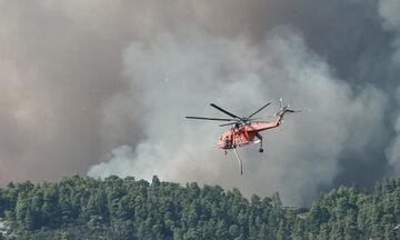 Update: Οι πυρκαγιές σε Λέρο, Μεγαλόπολη, Κέρκυρα, Ασπρόπυργο, Νέα Μανωλάδα και Χανιά (pics, vids)