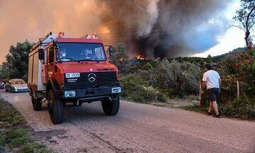 Πυρκαγιά σε δασική έκταση στην περιφερειακή Αιγάλεω