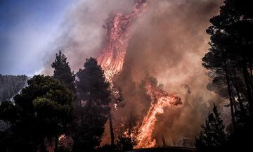 Μεγάλη πυρκαγιά στην Κέρκυρα: Εκκενώνονται δύο χωριά!