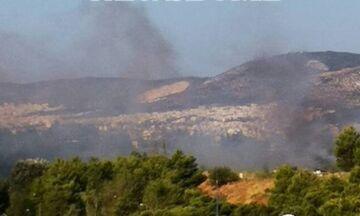 Φωτιά τώρα στην Αθηνών-Λαμίας, στη Λυκόβρυση - Έσπευσαν 17 οχήματα