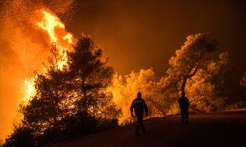 Πυρκαγιά στον Μαραθώνα, σε συναγερμό η Πυροσβεστική (pic)