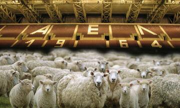 Διαθέσιμο και πάλι στα πρόβατα για 20 ημέρες το AEL FC Arena