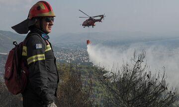 Φωτιά στη Νέα Μάκρη: Η κατάσταση αυτή την ώρα (pics + vids)