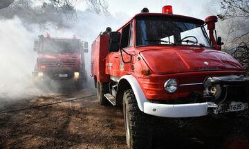 Πυρκαγιά στο Σέιχ Σου: Άμεση η επέμβαση της Πυροσβεστικής