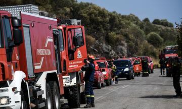 Πυρκαγιά στη Χαλκιδική: Καίγεται δασική έκταση στη Σιθωνία!