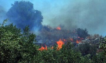 Πυρκαγιές σε Ηλεία, Αττική και Κέρκυρα!