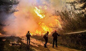 Πυρκαγιά στo Λαύριο – Δόθηκε εντολή εκκένωσης σπιτιών