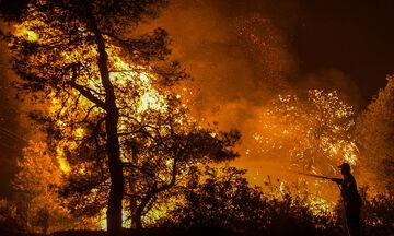 Ισχυρή πυρκαγιά στα Μέγαρα