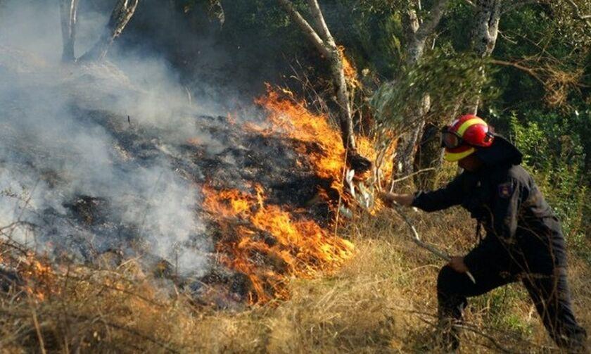 Ζάκυνθος: Η πυρκαγιά έφτασε στο χωριό Κερί - Προληπτική εκκένωση σπιτιών