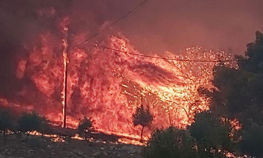 Φωτιά στη Ζάκυνθο: Δύσκολη νύχτα, καλύτερη η εικόνα στο μέτωπο