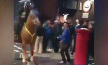 Οπαδός της Πόρτσμουθ γρονθοκόπησε... άλογο της αστυνομίας!  (vid)