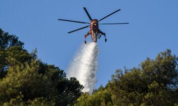 Συναγερμός στην Αρκαδία: Μεγάλη πυρκαγιά στο Χρυσοβίτσι