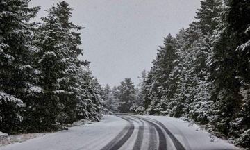 Έπεσαν τα πρώτα χιόνια στη Βόρεια Ελλάδα (pics, vid)