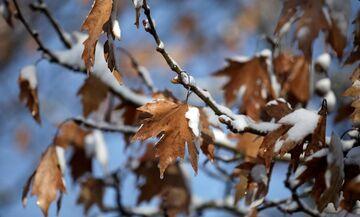 Καιρός: Τοπικές βροχές και σποραδικές καταιγίδες - Πού θα χιονίσει