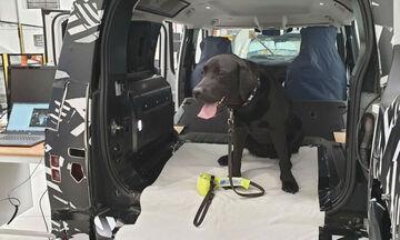 H απίστευτη δοκιμή αντοχής της Land Rover με τη βοήθεια σκύλου! (pics)