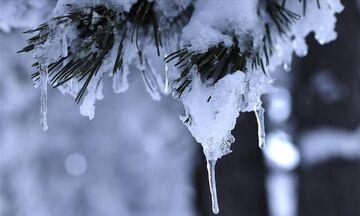 Καιρός: Έρχεται χιονιάς - Υπό το μηδέν η θερμοκρασία σε ορεινά και ημιορεινά
