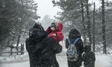 Στα «λευκά» η Πάρνηθα - Δείτε σε ποιες περιοχές της χώρας χιονίζει (pics, vid)