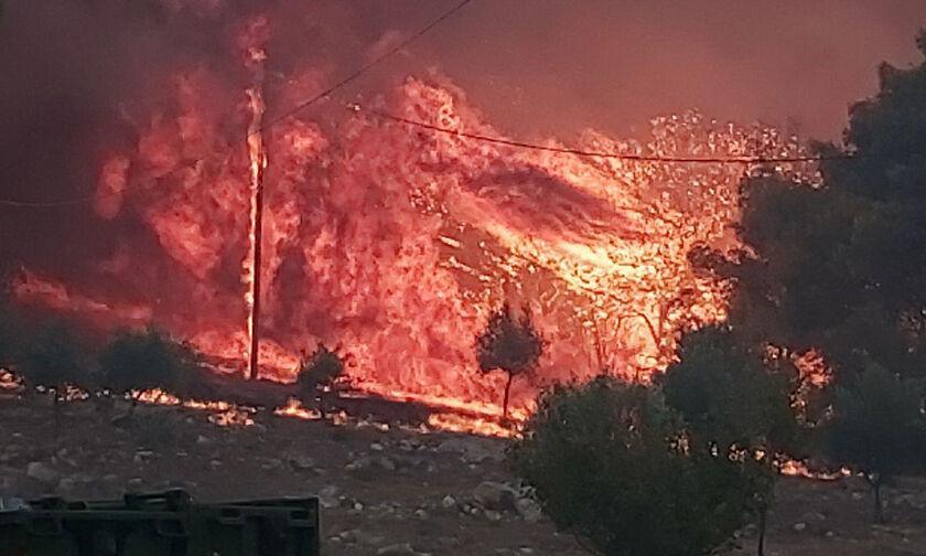 Σπάρτη: Ξέσπασε δασική πυρκαγιά κοντά στο καταφύγιο Ταϋγέτου