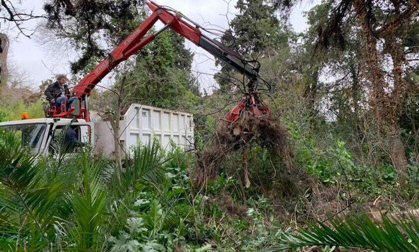 Ξεκίνησε η ανάπλαση του ιστορικού Βοτανικού Κήπου στην Ιερά Οδό! (pics)