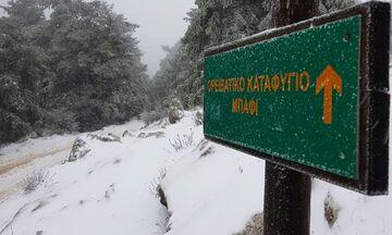 Έτσι ξημέρωσε στη χιονισμένη Πάρνηθα - Βίντεο από το καταφύγιο Μπάφι