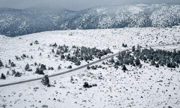Έκλεισε ο δρόμος από το ύψος του τελεφερίκ και πάνω στην Πάρνηθα λόγω του χιονιού (vid)