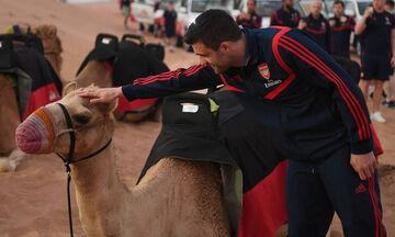 Άρσεναλ: Στο Ντουμπάι για προπόνηση και... καμήλες (pics)
